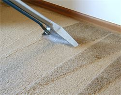 Carpet Cleaning by KLEANFORCE
